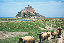 Saint Michel Island / France - AMURA