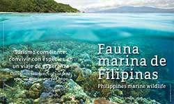 Fauna marina de Filipinas - AA Yaptinchay, director de Marine Wildlife Watch of the Philippines