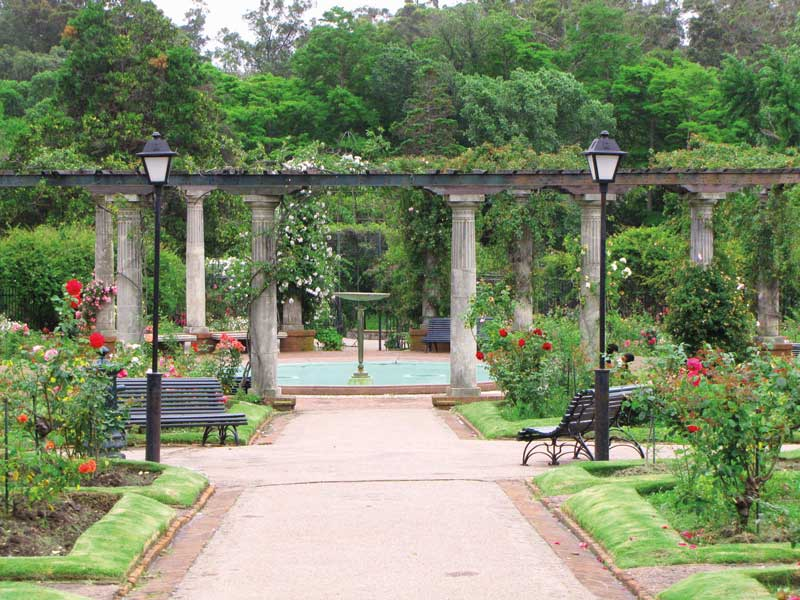 Amura,The botanical garden has plant species from several regions of the world.