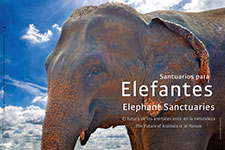 Elephant Sanctuaries - Maruchy Behmaras
