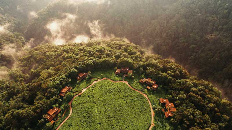 Amura, AmuraWorld,Rwanda,Ruanda,Compás Internacional,International Compass , The One & Only Nyungwe hotel is located in the Gisakura tea plantation.